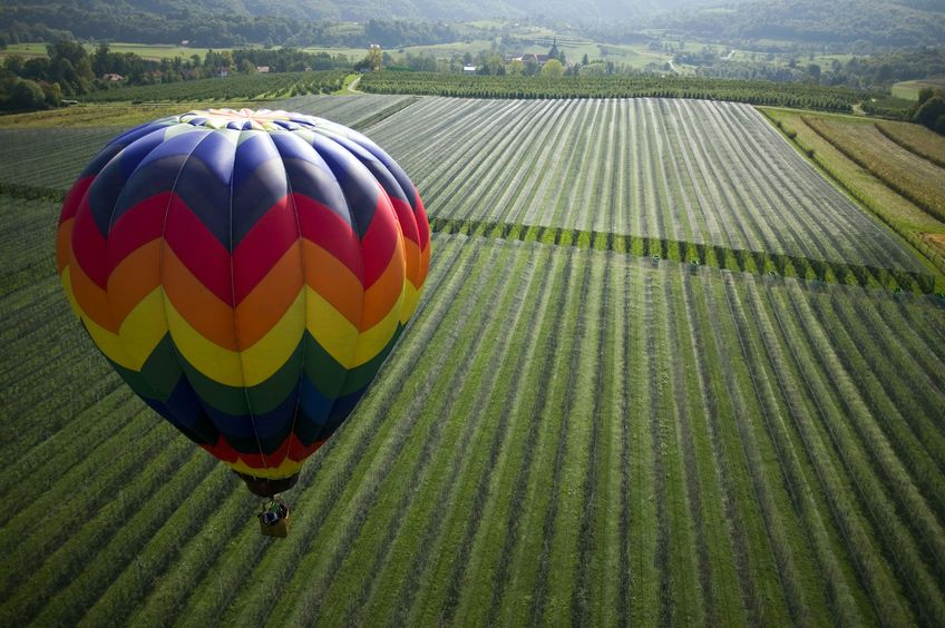Explore Healdsburg With A Hot Air Balloon Ride